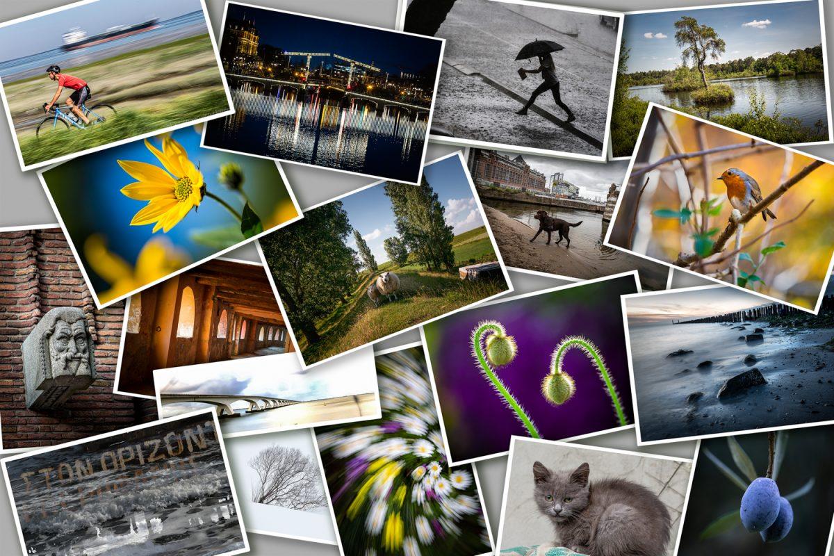 Fotoreizigers fotowedstrijd 2021